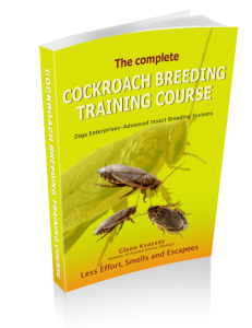 Cockroach Breeding ebook